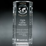 Capricorn Global Award 10 in.