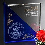 Acclaim Optical Crystal and Blue Crystal Award 6 in.