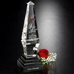 Epitome Optical Crystal Award  12 in. H