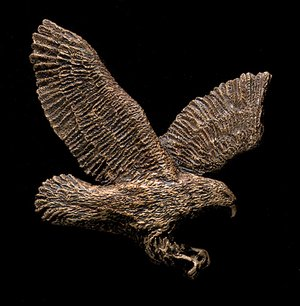 Flying Eagle Bronze Accent Addition to an Award