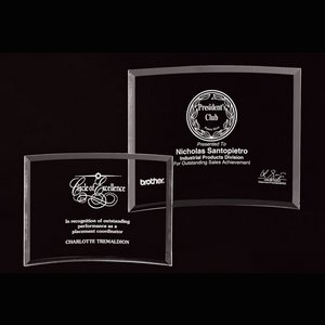 Bent Glass Award (small)