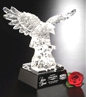 engraved custom eagle awards